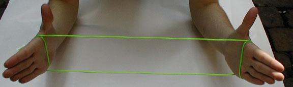 external image cats2.jpg